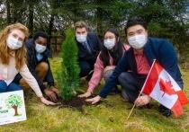 5600 деревьев мира посадили в 21 стране на 5 континентах в рамках «Озеленения планеты»