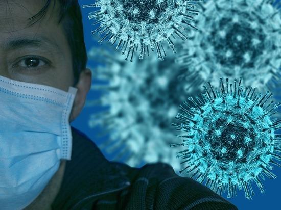 В Петербурге на 76% выросло количество больных коронавирусом