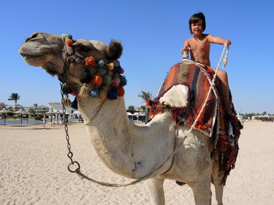 Названа минимальная стоимость отдыха в открывающемся Египте
