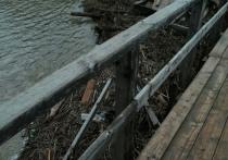 В Тверской области к мосту прибило пугающие ветки