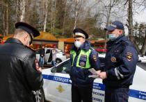 150 человек наблюдали за порядком в Вербное воскресенье в Псковской области