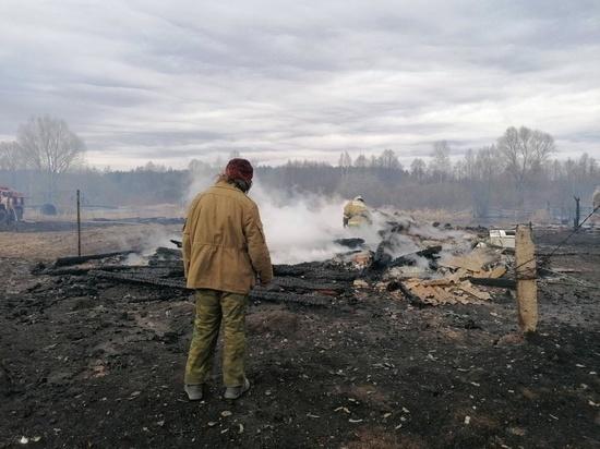 За неделю в Нижегородской области зарегистрировано 127  пожаров сухой травы