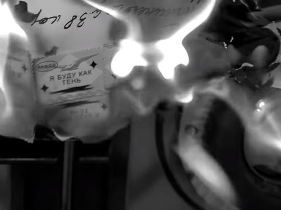 Фанаты нашли секрет в новом клипе Земфиры «Пальто»