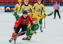Экс-хоккеист «СКА-Нефтяника» стал лучшим игроком Швеции