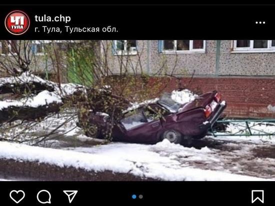 """В Туле рухнувшее во время снегопада дерево """"разрубило"""" пополам ВАЗ"""
