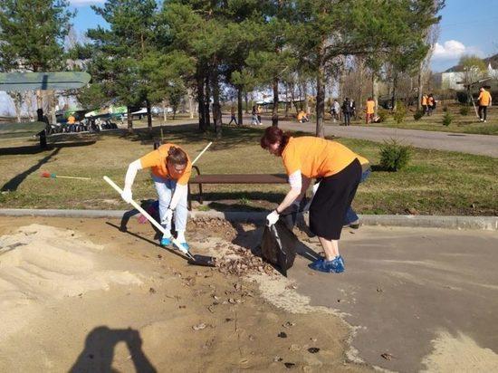 В Парке Победы в Нижнем Новгороде посадят кедровую аллею