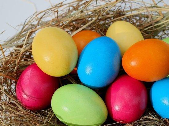 Диетолог развеял миф о вреде куриных яиц для печени