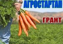 Прокуратура Якутии: 15 млн по гранту «Агростартап» были выделены неправомерно