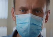 Навальный захотел лично участвовать в апелляции по делу о клевете на ветерана