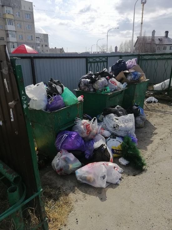Захламленную контейнерную площадку Ноябрьска избавили от мусора после жалобы в соцсети