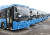 Новокузнецкие автобусы начнут ходить по летнему расписанию
