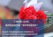 В Хабаровске 2 мая пройдет акция-флешмоб «Журавли»