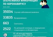 В Кемерове за сутки выявили более 20 новых случаев заражения коронавирусом