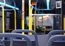 В Красноярске в ночь на 2 мая будут работать пять бесплатных автобусных маршрутов