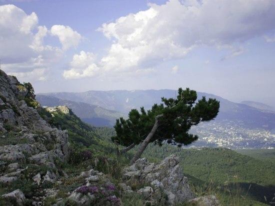 Зеленский соберет заседание СНБО после посещения границы с Крымом