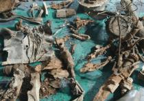 Под Геленджиком нашли обломки самолёта времён Великой Отечественной войны