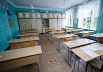 Ковид-очаг вспыхнул в новоржевской средней школе