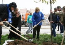 В Серпухове высадят деревья в рамках акции «Лес Победы - Сад Памяти»