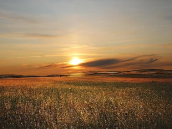 Гектар пала сухой травы потушили за сутки в Томской области