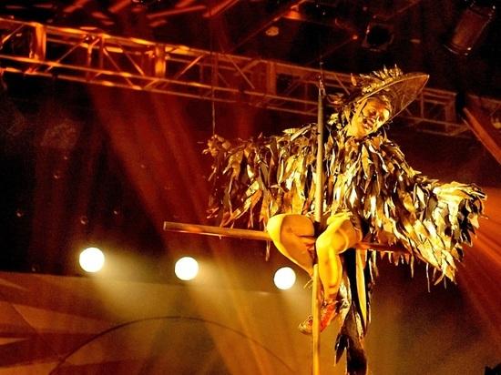 В Краснодарском Молодёжном театре состоялась премьера «Золотого петушка» по мотивам стихотворной сказки Пушкина