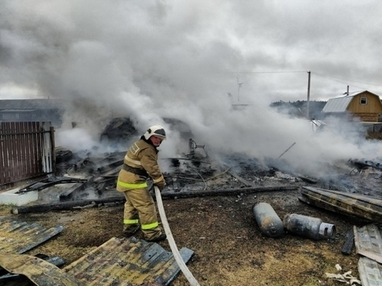Кролики, куры и поросята погибли при пожаре в Котласском районе