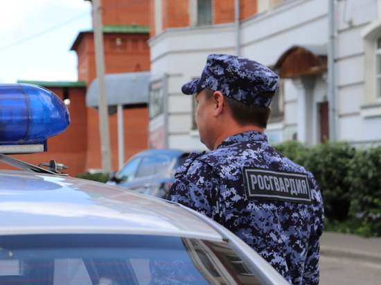 В поселке Марий Эл задержан ограбивший магазин йошкаролинец