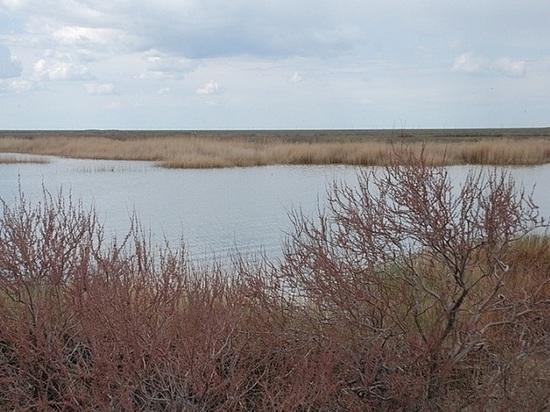 В Калмыкии на протяжении нескольких лет пересыхает озеро Сарпа