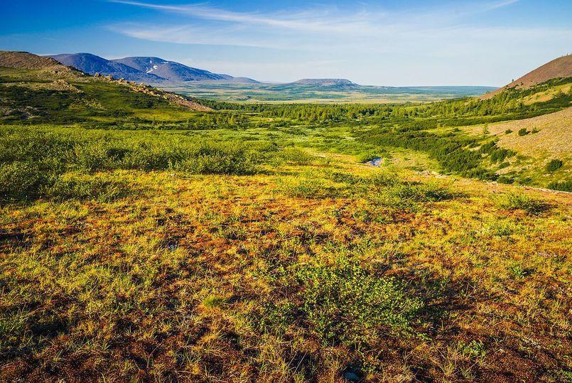 Зарплаты и нефть зашкаливают: как живет самый богатый регион России