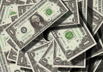 Москвич выплатил за 17 лет алименты сыну из Калуги в долларах