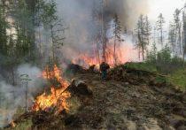 В 2021 году на борьбу с лесными пожарами в Якутии закупят в два раза больше специальной техники