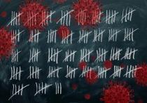 Статистика коронавируса в Карелии не показывает всплесков