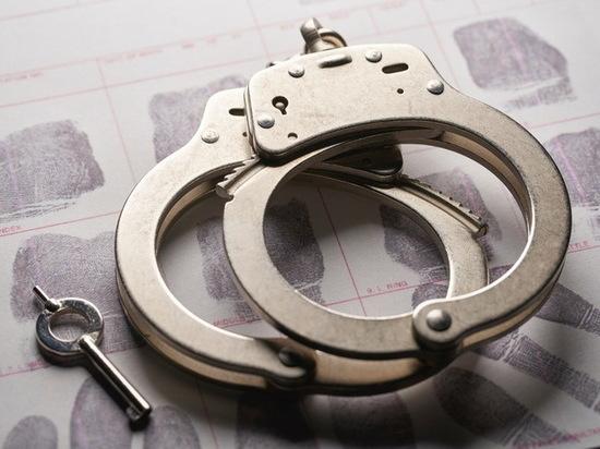 26-летняя йошкаролинка обвиняется в контрабанде наркотика