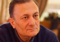 Грузинский оппозиционер назвал американского посла диктатором