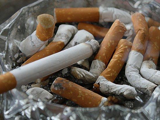 Брянщину назвали антилидером России по нелегальному обороту табака