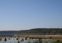 Псковская область примет участие в мониторинге биологических рисков