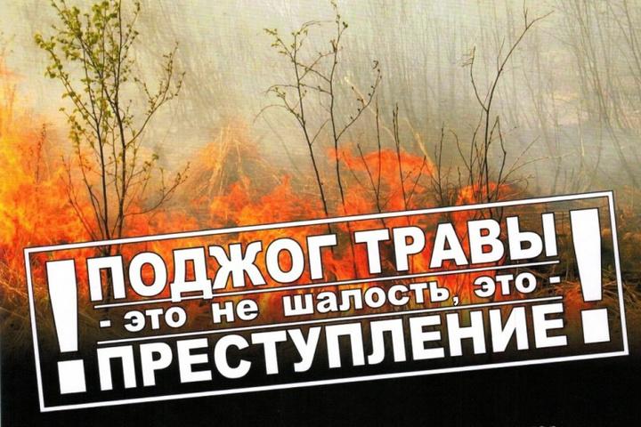 Опять трава, опять горит: едкий дым вновь окутал берега реки Костромы