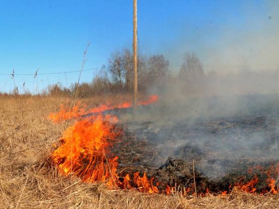 В Курганской области с начала пожароопасного сезона зафиксировано более 400 ландшафтных пожаров