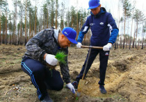 В Челябинской области началась международная акция «Сад памяти»