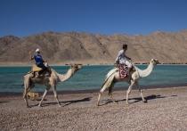 Цены на туры в Египет окажутся выгодными только для первых туристов