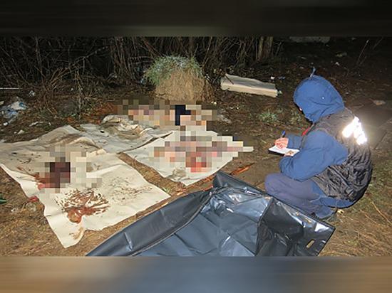 В Чувашии нашли расчлененные останки мужчины, пропавшего в новогоднюю ночь