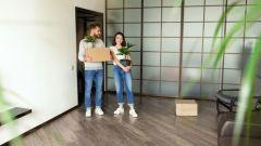 Алгоритм покупки квартиры дистанционно