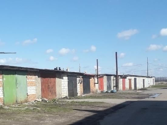 В Михайлове заметили коз на крышах гаражей