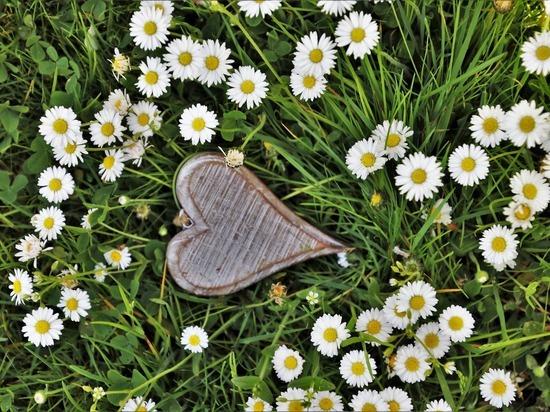 Названы 5 знаков зодиака, которые испытают любовь на прочность в мае
