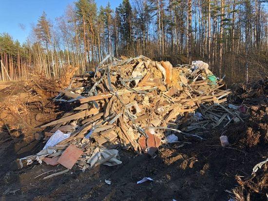 Обломки снесенного вокзала в Токсово свалили на берегу озера неподалеку