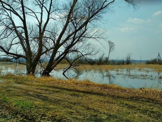 В Кирове вода поднялась на 4 метра, но это еще не пик