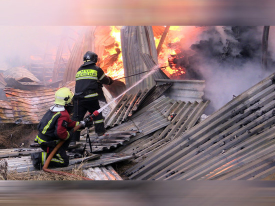 Крупный пожар произошел на складе пиломатериалов в Чебоксарах