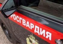 Суд рассмотрит дело 26-летнего жителя Заринска, которого обвиняют в применении насилия в отношении представителя власти.