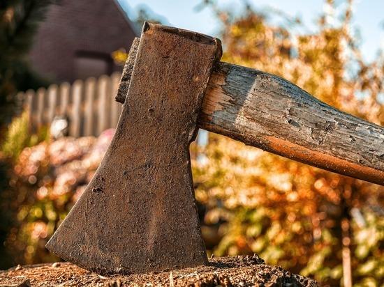 66-летняя пенсионерка из Локни убила деверя топором в голову
