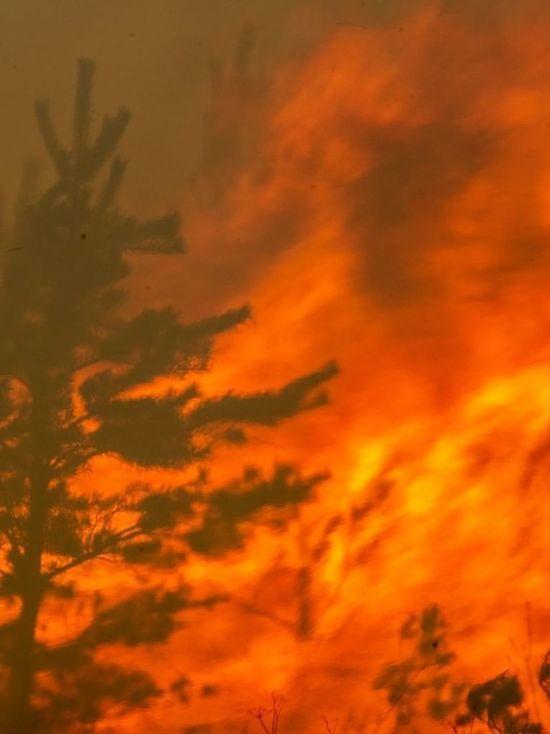 Жителям Серпухова рассказали о видах пожаров