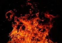 На Авиаторов в Смоленске полыхала иномарка: специалисты заподозрили поджог